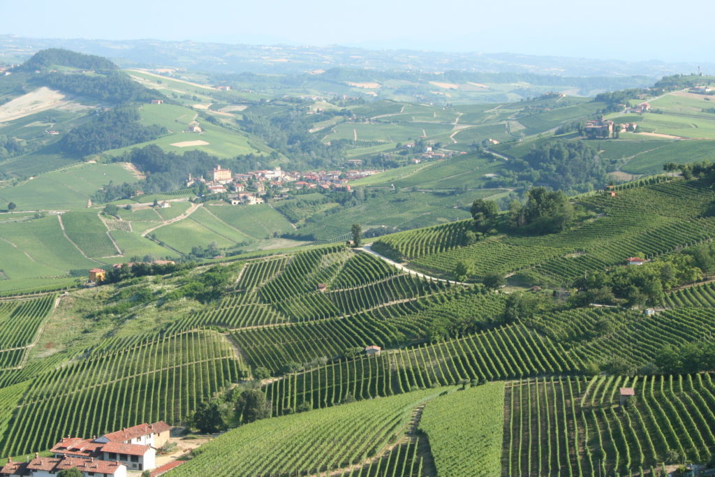 Piemonte,_Italy_landscape_with_vineyards
