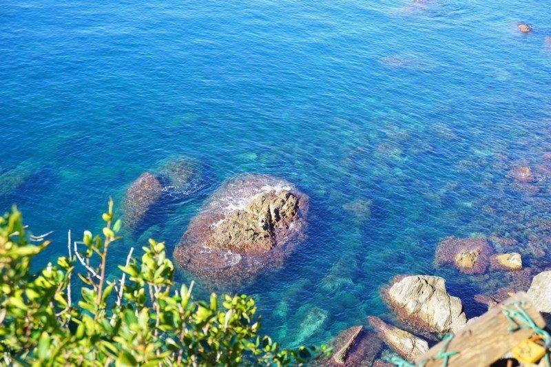マナローラ海