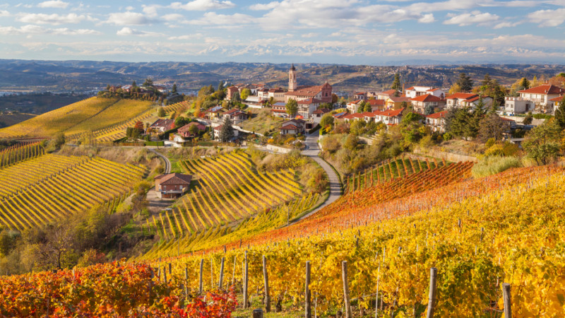 1度は飲みたい!イタリアのオススメワイン4種を知る~赤ワイン編~