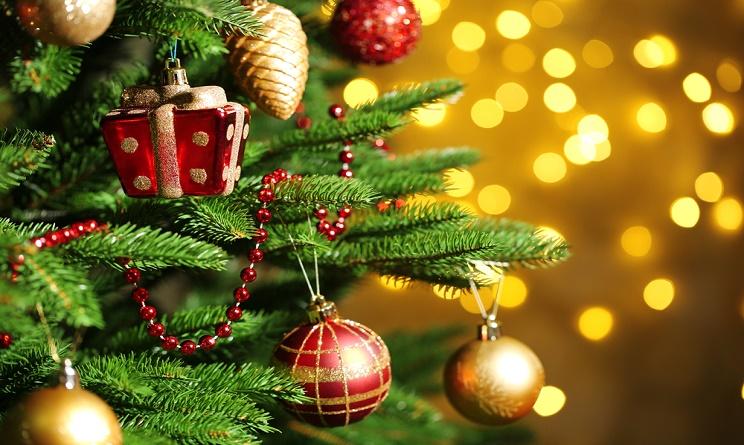 クリスマスのモミの木