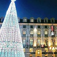 【クリスマス】盛り上がりを見せる、イタリア各地のクリスマスツリー特集!