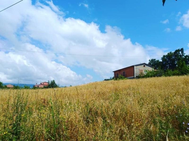 【小さな村の物語 イタリア】第281回 モッタ・サンタ・ルチア/カラブリア州