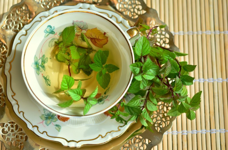 バジルやローズマリー?イタリア料理に不可欠なハーブ5種の使い方と育て方